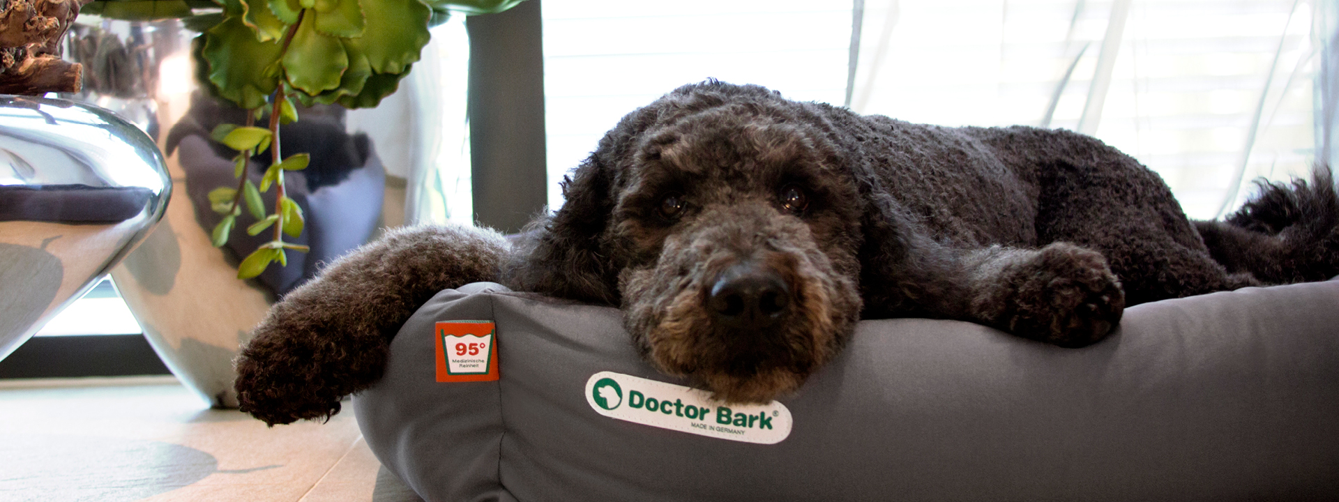 CONTENT-SLIDER-HEADDERBILDER-DOCTOR-BARK-1920x720