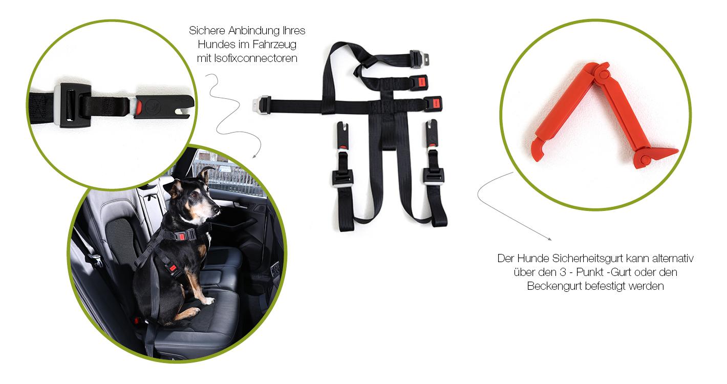 doggy-save-storyx1420x900-landingpage-doggysafe-big-produkt-v2