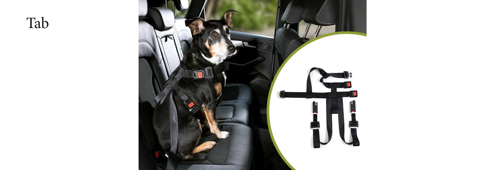 DoggySafe - Hunde Sicherheitsgurt - Darstellung im Auto